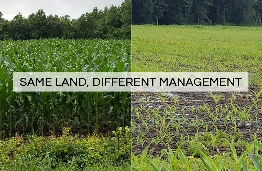 Soil destruction