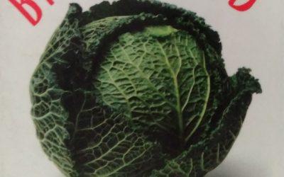 Gbiota food for gut health