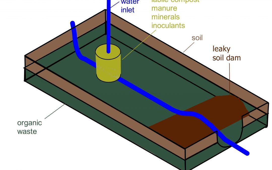 Principles of Gbiota beds